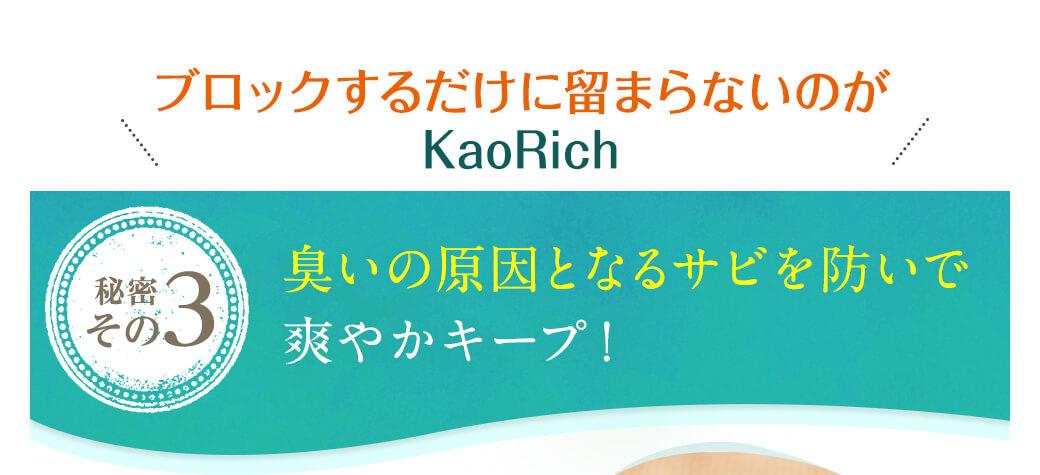ブロックするだけに留まらないのがKaoRich 秘密その3 臭いの原因となるサビを防いで爽やかキープ!