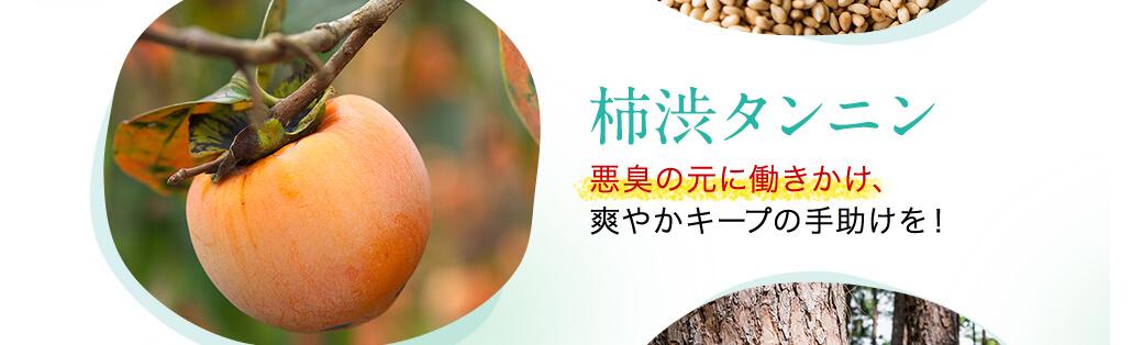 「柿渋タンニン 」悪臭の元に働きかけ、爽やかキープの手助けを!