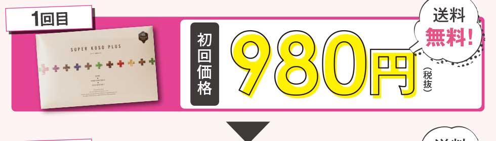 1回目 980円(税抜)